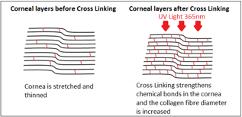 Crosslinking illustration